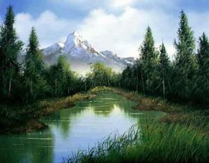 551_Wilderness_Creek