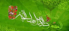 TR Best Wallpaper 12.Emam Mahdi (006)