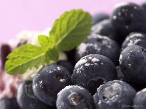 TR Best Wallpaper Fruits (014)